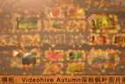 AE模板:Videohive Autumn 深秋枫叶图片展示