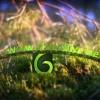 AE模版:春意盎然万物复苏树叶生长标志LOGO展示