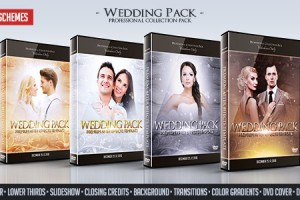 AE模版:4色唯美粒子效果婚礼包装动画  Wedding Pack 12071574