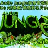 2015年Audio Jungle超级音效库AE模板/精选影视片头音乐精选第37辑(21组)