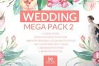 AE模板:水墨油彩花枝生长调色炫光浪漫婚礼包装 Wedding Mega Pack 2