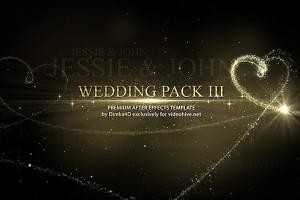 AE模板:漂亮金色线条心型粒子浪漫婚礼图文片头展示包装 Wedding