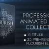 AE模板:漂亮藤蔓生长文字标题动画合集 Flourish Titles Collection