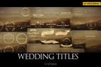 AE模板:44种漂亮简洁婚礼新人姓名生长标题动画 Wedding Titles