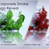 AE模板:流体烟雾LOGO标志展示片头动画 Quick Corporate Smoke Logo Reveal