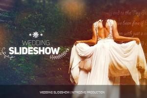 AE模板:唯美浪漫婚礼电子相册图片幻灯片效果展示 Wedding Slideshow 免费下载