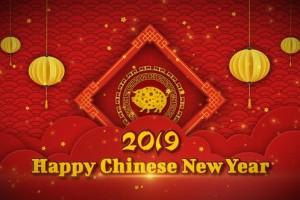 AE模板-红色剪纸风格粒子灯笼LOGO标志中国新年片头 Chinese New Year 2019