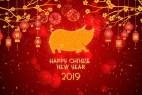 AE模板-欢快喜庆桃花悬挂灯笼照片文字中国新年片头 Chinese New Year 2019