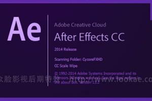AE CC 2014 软件中文英文完整破解版 Adobe After Effects CC 2014.2 Win/Mac