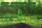 AE模板:幼苗生长开花Logo展示 VideoHive Growing Flower