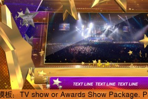AE模板:颁奖晚会栏目包装 TV show or Awards Show Package Part2
