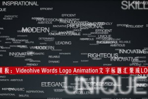 AE模板:Videohive Words Logo Animation 粒子文字标题汇聚成LOGO