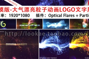 AE模版:VideoHive 大气漂亮粒子动画LOGO文字展示