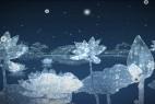 AE模版/视频素材:晶莹剔透中国风荷花 VideoHive Water Flowers