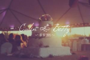 AE模板:30组婚礼新郎新娘名字标题展示 30 Wedding Titles