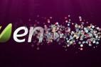 AE模板:多彩粒子散开汇聚LOGO出现展示片头 Bubble Opener 3795972