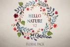 AE模板:植物花藤自然生长动画工具包 Floral Pack v2