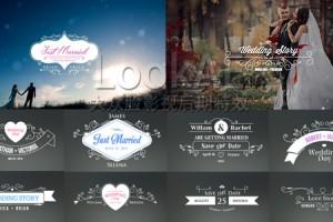 AE模板:100种浪漫优雅婚礼新人姓名日期标题动画效果