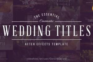 AE模板:14组浪漫婚礼日期名字排版动画 Wedding Titles