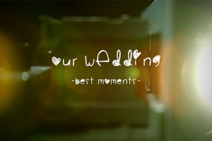 AE模板:浪漫复古婚礼电子相册图片展示 Wedding Album - Slide Projector
