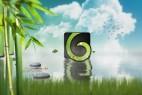 AE模板:中国风竹叶青草蓝天白云水面LOGO倒影展示 Nature Logo Revealer
