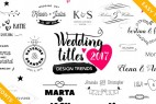 AE模板:浪漫优雅婚礼文字标题新郎新娘名字动画 Wedding Titles