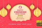 AE模板-中国农历鼠年光斑粒子祥云灯笼2020新年快乐片头 Chinese New Year