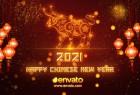 AE模板-2021年农历新春节日快乐十二生肖牛年粒子图案描绘喜庆开场片头