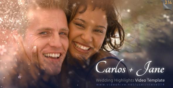 AE模版-粒子婚礼模板 VideoHive Wedding Highlights-Video Template