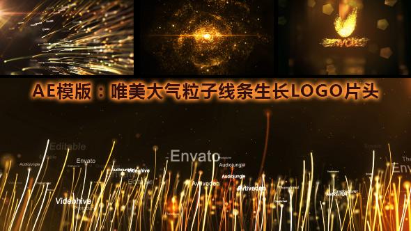 AE模版:唯美大气漂亮粒子线条生长 LOGO 片头展示