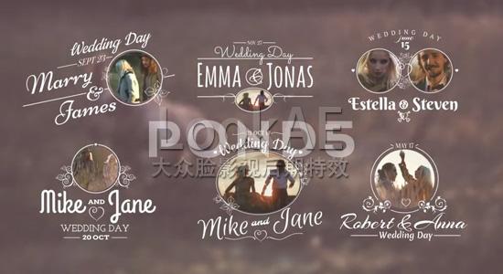 AE模板:14组婚礼文字标题动画 Wedding Titles